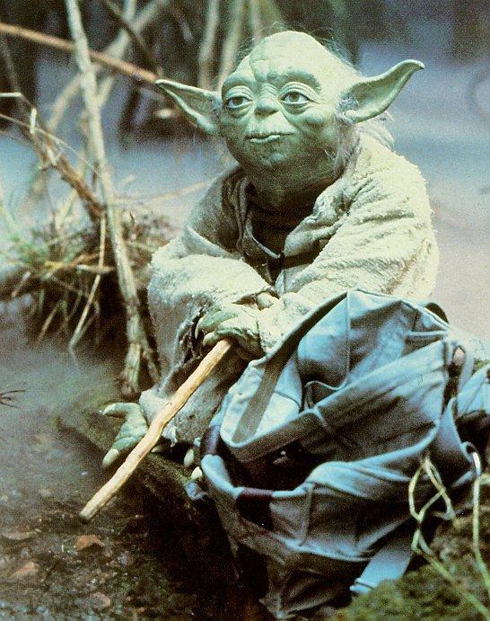 Photo de Yoda assis près d'un marécage de Dagobah.