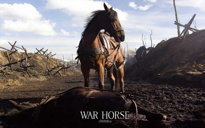 Wallpaper du film War Horse de Steven Spielberg sur laquelle le cheval est au milieu d'un champ de bataille.