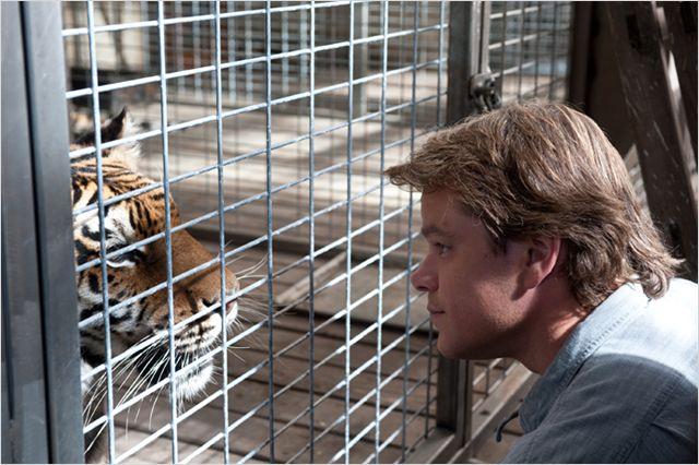 Photo de Matt Damon s'occupant d'un tigre dans le film Nouveau Départ de Cameron Crowe.