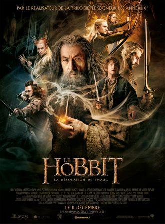 Affiche du Hobbit : La désolation de Smaug sur laquelle nous découvrons tous les personnages principaux sur un montage photo.