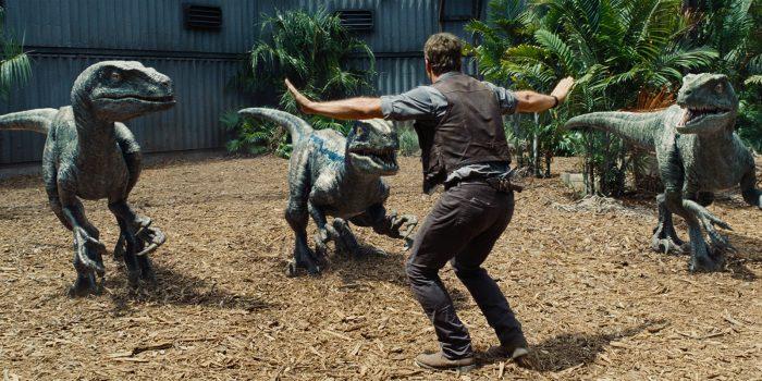 Photo de Chris Pratt dans le film Jurassic World. L'acteur est pris de dos et est face à trois vélociraptors qu'il tente de dompter.