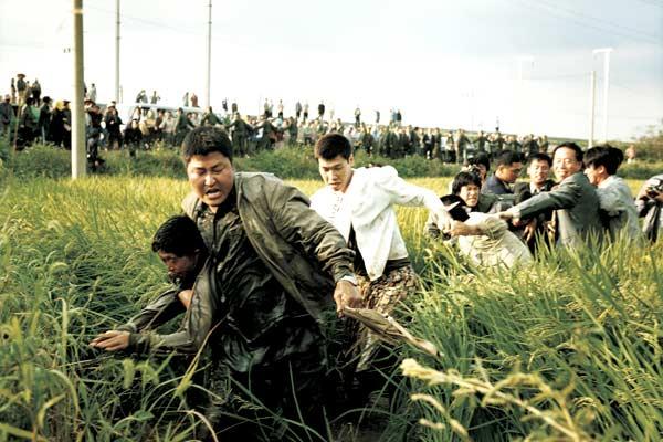 Photo de Song Kang-ho dans Memories of Murder qui attrape violemment un suspect dans les champs et le traîne avec lui.