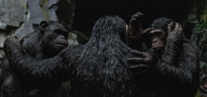 Photo tirée de La Planète des Singes - Suprématie de Matt Reeves. Vu de dos, César met sa main sur les épaules de deux singes de façon affectueuse.