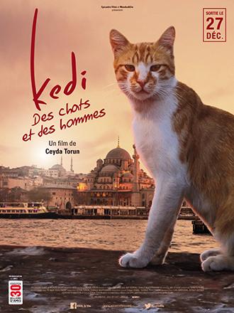Affiche du film Kedi, Des chats et des hommes de Ceyda Torun, sur laquelle un chat regarde vers l'objectif. Au loin, nous distinguons la ville d'Istanbul.