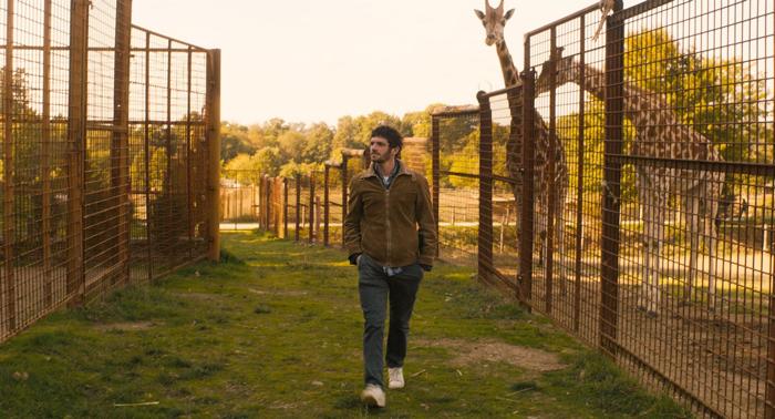 Photo tirée de Gaspard va au mariage d'Antony Cordier, dans laquelle Félix Moati se balade dans le zoo.