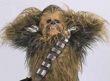 Photo de Chewbacca levant les bras dans L'Empire contre-attaque.