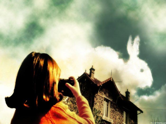Photo tirée du film Le Fabuleux Destin d'Amélie Poulain sur laquelle la jeune héroïne photographie un nuage en forme de lapin.