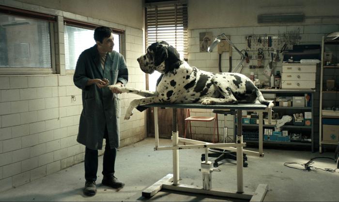 Photo tirée de Dogman de Matteo Garrone sur laquelle le héros interprété par Marcello Fonte s'occupe d'un chien dans sa boutique.